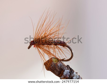 Macro shot of a brown full hackle dry fly fishing lure used for trout fishing - stock photo