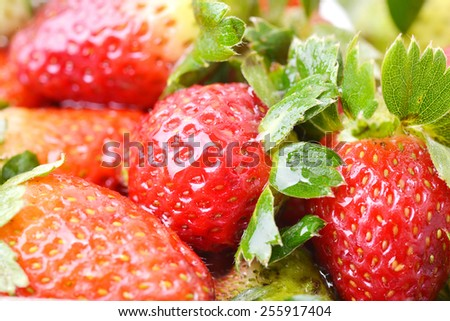 Macro shot of a group of fresh strawberries - stock photo