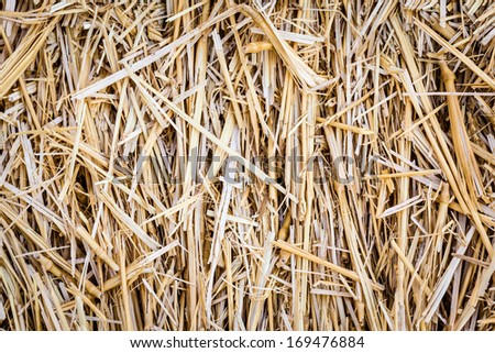 macro shot of a hay bale or an archery target - stock photo