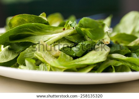 Macro shot of Mache lettuce salad topped with balsamic vinegar, olive oil, and Himalayan pink salt picked fresh from a local organic farm - stock photo