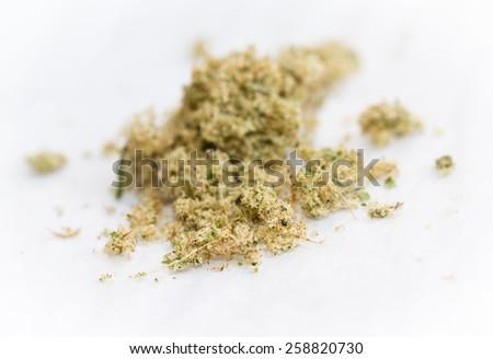 macro shot of marijuana kief on a white background - stock photo