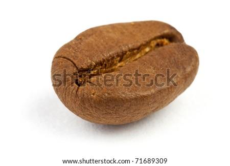 Macro shot of single coffee bean on white background - stock photo