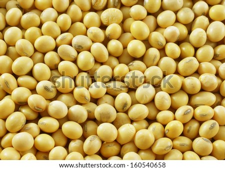Macro shot of soybeans fills the frame - stock photo