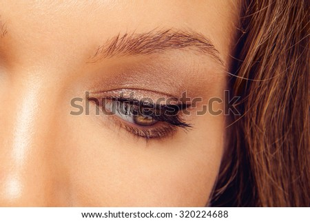 Macro Shot of Young European Woman's Beautiful Eye. Elegance CloseUp of Female Eye with Classic Brown Smoky Eye MakeUp and Liner. Beauty, Cosmetics and Makeup. Brown Eyeshadow on Eyelid. - stock photo