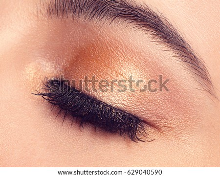 Macro Shot of Young European Woman's Beautiful Eye. Elegance CloseUp of Female Eye with Classic MakeUp. Beauty, Cosmetics and Makeup. Brown Eyeshadow on Eyelid
