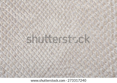 macro texture of gray snakeskin studio - stock photo