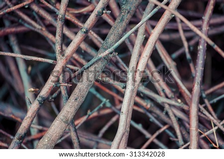 Macro view of a pile of rustic wooden tree branches and twigs, shallow DOF