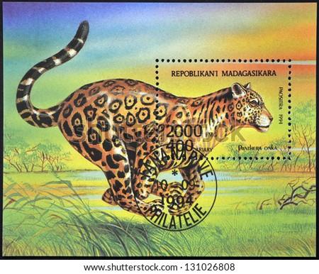 MADAGASCAR - CIRCA 1994: A stamp printed in Madagaskar dedicated to wild Animals shows Panthera Onka, circa 1994 - stock photo