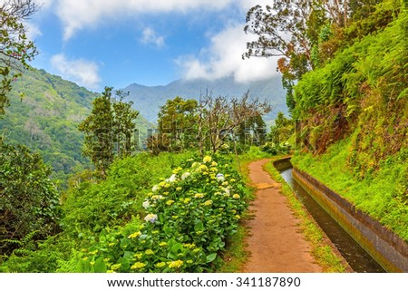 Madeira, hiking along irrigation channel (Levada)