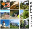 Madeira island collage with ocean and mountain scenes - stock photo