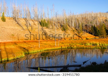 Madison river in Yellowstone national park in autumn time - stock photo