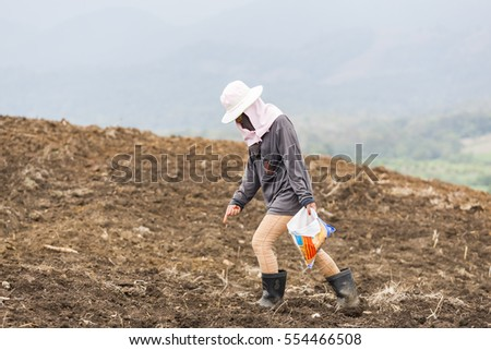 MAE SOT, TAK, THAILAND - JANUARY 11, 2017 : Unidentified Karen woman as agricultural worker is sowing corn seeds into the soil for planting at Mahawan, Mae Sot, Tak, Thailand.