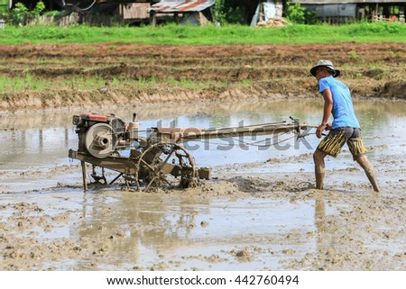Maesot,Tak , THAILAND - June 25, 2016 : : Portrait of unidentified Thai Farmer Using Walking Tractors For Cultivated Rice Plantation.
