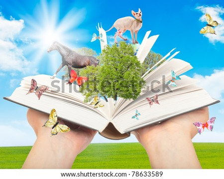 Magic book in human hands with a green tree and the rays of light on the background of nature. Symbol of knowledge. - stock photo