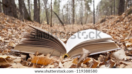 magic book on background autumn Fall forest landscape - stock photo
