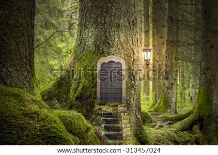 magic fantasy world - stock photo