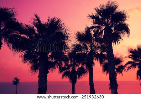 Magic pink sunset over tropical beach
