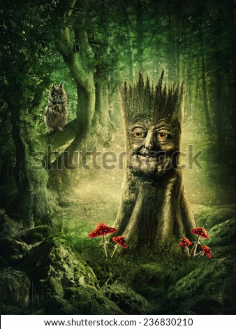 Magic stump with a face in the wood - stock photo