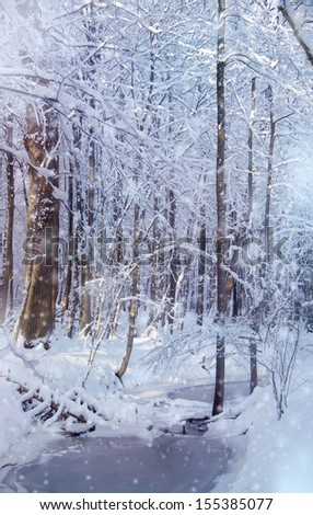 magic winter forest during snowfall - trees and river
