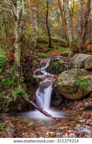 Magical autumn landscape theme. The source runs on a beam. - stock photo