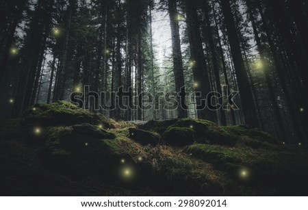 magical lights sparkling in mysterious forest at night - stock photo