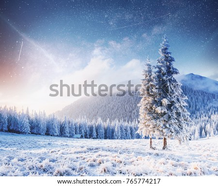 magical moment, snow covered trees. Winter landscape. Vibrant night sky with stars and nebula and galaxy.