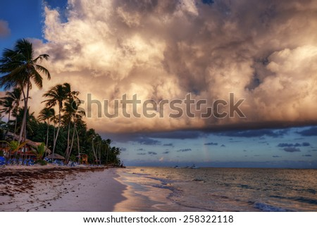 Magnificent clouds over palm trees and sandy beach - stock photo