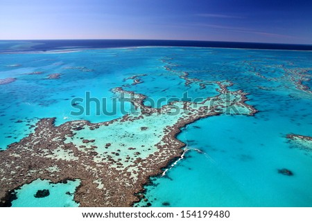 Magnificent colours in the Great Barrier Reef - stock photo