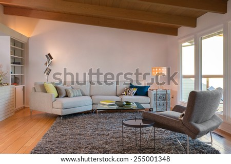 Magnificent living room interior with designer couch, book shelf, french sliding doors and hardwood floor. Designer chair, natural colored fine sisal rug in open space living room. - stock photo