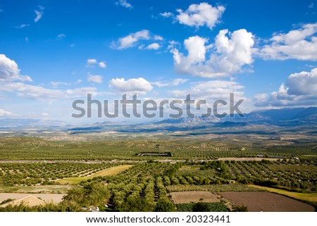 Magnificent panorama of surrounding olive groves by Baeza town, Andalusia, Spain - stock photo