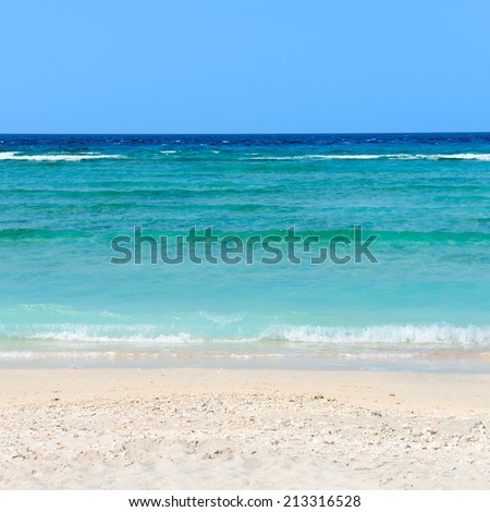 Magnificent view on a beach with corals and the blue sea under clear sky in the summer - stock photo