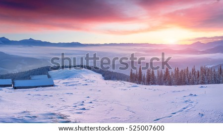 Magnificent winter sunrise in abandoned mountain village with snow covered fir trees. Colorful outdoor scene, Happy New Year celebration concept. Artistic style post processed photo.