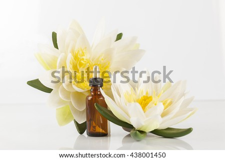 Magnolia Flowers and zen stones on the white background - stock photo