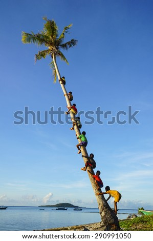 MAIGA ISLAND, MALAYSIA - JUNE 5 : Unidentified children of Sea Gypsy Bajau Tribe climbing coconut tree on June 5th, 2014 in Maiga Island, Sabah, Malaysia.  - stock photo