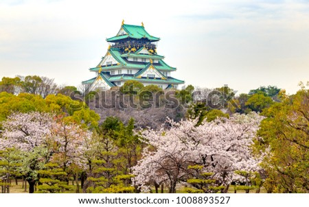 Main tower of The Osaka Castle (Osaka-jo) through the full blooms of Japanese Cherry trees during Cherry blossoms season on cloudy day in Osaka, Japan.