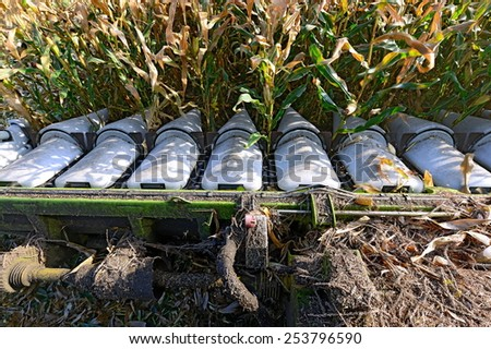 Maize grain harvester to gather corn - stock photo