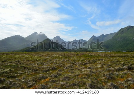 majestic bog landscape with light foggy mountain in background in summer - stock photo