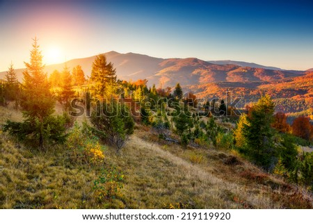 Majestic colorful landscape with sunny beams at mountain valley. Natural park. Dramatic morning scene. Red autumn leaves. Carpathians, Ukraine, Europe. Beauty world.