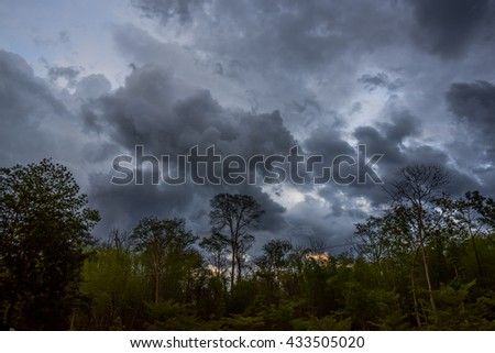 Majestic forest landscape under sky with storm clouds