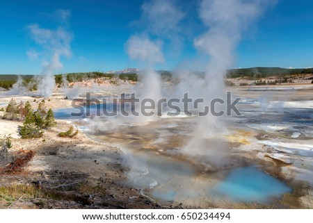 Majestic Geyser Valley in Yellowstone, Wyoming.