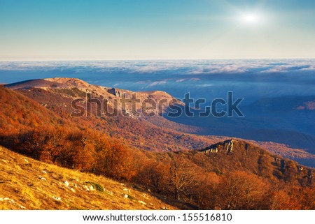 Majestic morning mountain landscape with colorful forest. Autumn leaves. Crimea, Ukraine, Europe. Beauty world.
