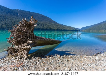 Majestic mountain Cheakamus turquoise water lake in Canada, with fallen tree