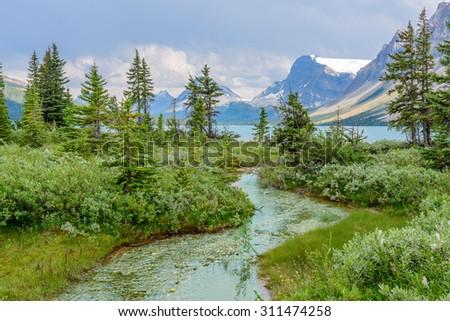 Majestic mountain river in Canada. Bow Lake Park. Jasper. Alberta. - stock photo