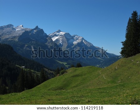 Majestic Oldenhorn And Green Meadow - stock photo