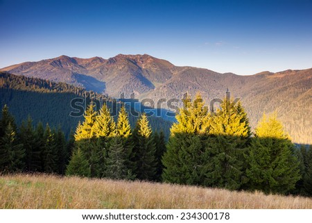 Majestic panorama of green mountains with sunny beams. Dramatic scene. National Park, Carpathian, Ukraine, Europe. Beauty world.