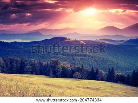 Majestic sunny hills under morning overcast sky. Dramatic scenery. Carpathian, Ukraine, Europe. Beauty world. Retro filtered. Instagram toning effect. - stock photo