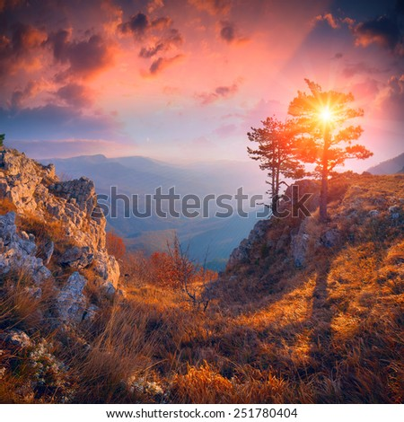 Majestic sunrise in the Crimea mountain valley with a lonely tree on a cliff - stock photo