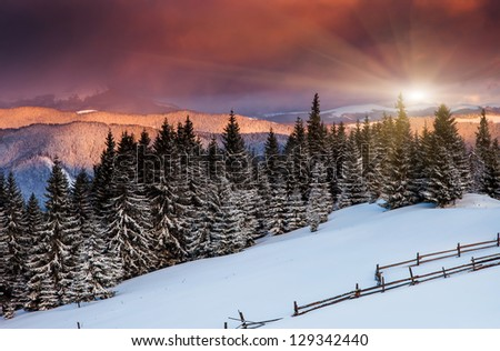 Majestic sunrise in the mountains landscape.Carpathian, Ukraine. - stock photo