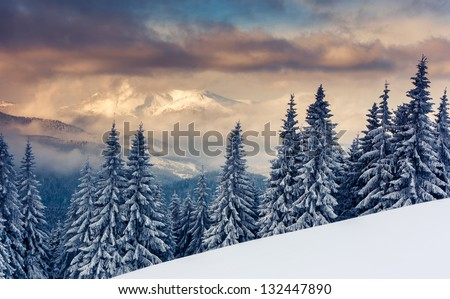 Majestic sunset in the mountains landscape. Carpathian, Ukraine. - stock photo