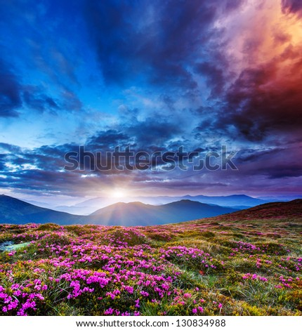 Majestic sunset in the mountains landscape. Overcast sky before storm. Carpathian, Ukraine, Europe. Beauty world. - stock photo